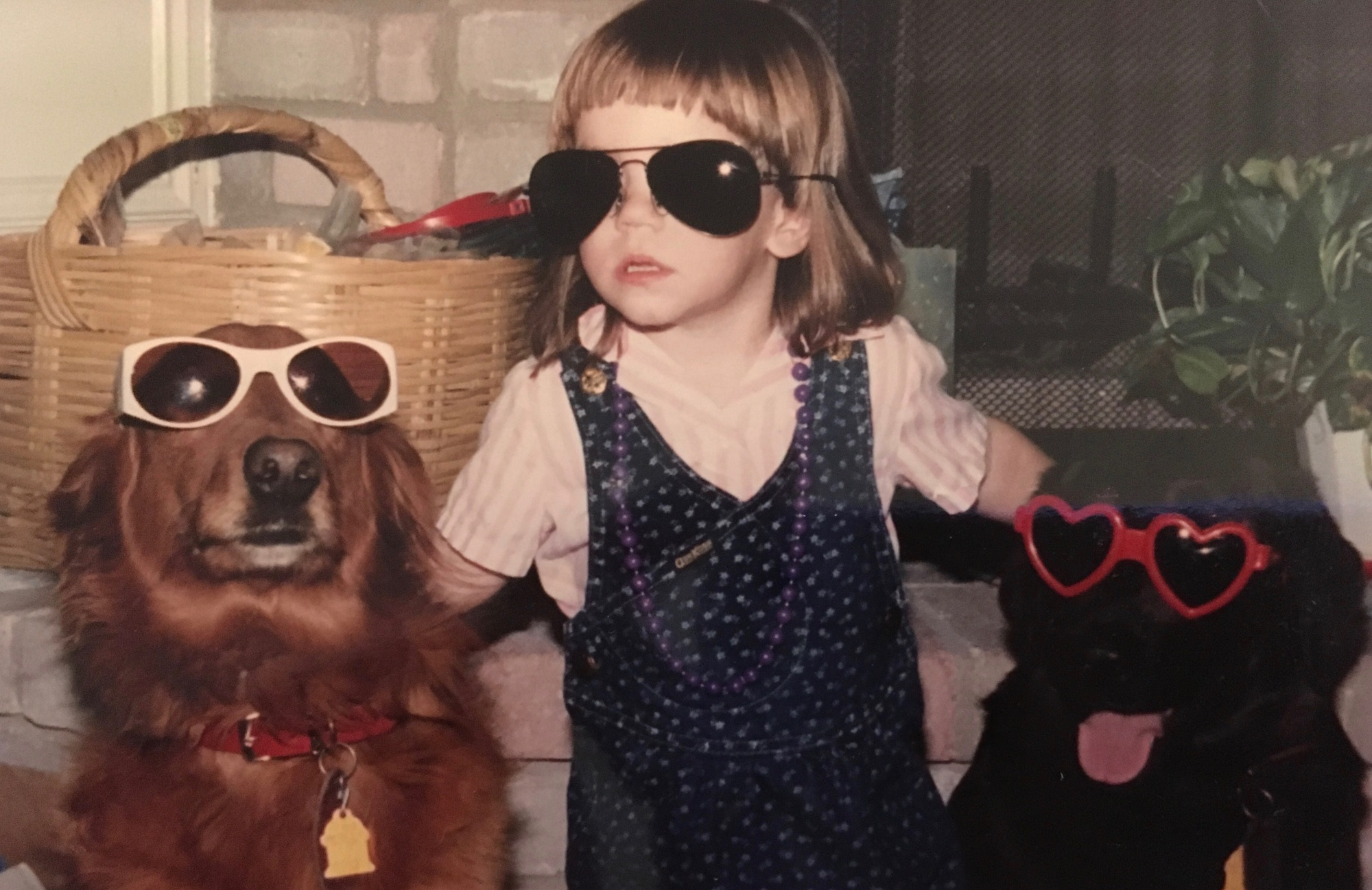 Me with my dogs, Marmey & Raisin, all of us wearing sunglasses